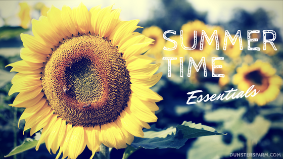 Top 3 tips for enjoying summer 2017☀️